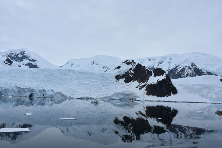 Antarctic Antarctic Peninsula Antarctica Cloudy Freezing Glacier Glaciers Horizon Over Water Ice Iceberg Iceberg - Ice Formation Icebergs Mountains Mountains And Sky Ocean Polar  Polar Climate Reflections Reflections In The Water Sea Sea And Sky Snow Snowcapped Mountain Winter Winter Wonderland