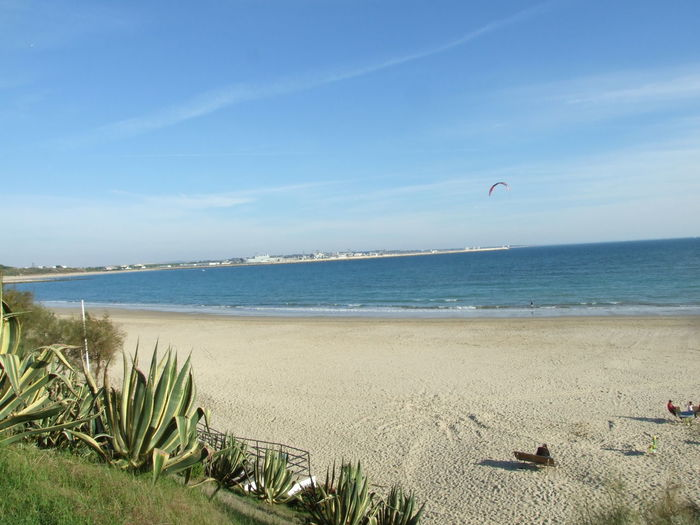 Beach Beauty In Nature Blue Clear Sky Day Horizon Over Water Leisure Activity Marram Grass Nature No People Outdoors Parachute Paragliding Sand Scenics Sea Sky Water