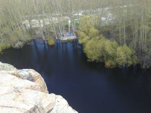 Blacklake Water Plant Tree Nature Reflection Scenics - Nature Lake
