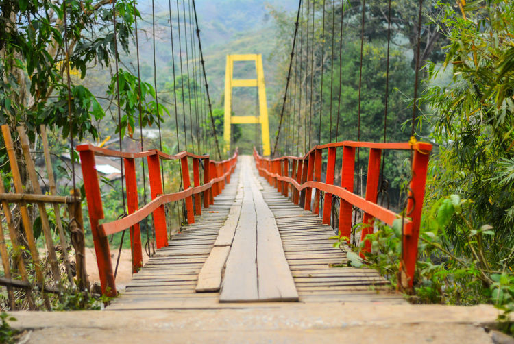 Architecture Bridge Bridge - Man Made Structure Built Structure Connection Day Diminishing Perspective Direction Footbridge Forest Growth Nature No People Outdoors Plant Railing The Way Forward Tree vanishing point Wood - Material