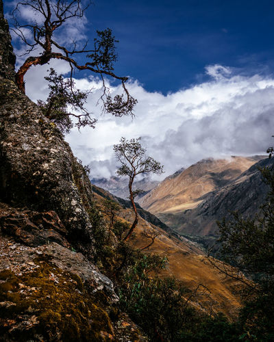 Mountain Scenics - Nature Beauty In Nature Sky Plant Cloud - Sky Tranquility Tranquil Scene Tree Environment Landscape Non-urban Scene Nature No People Day Land Outdoors Mountain Range Remote Rock Formation