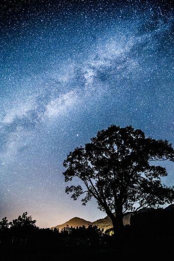 Milky Way Milkyway 天の川 開田高原 長野 Japan Stars