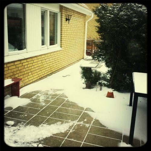 och så kom snön Snowing Winter