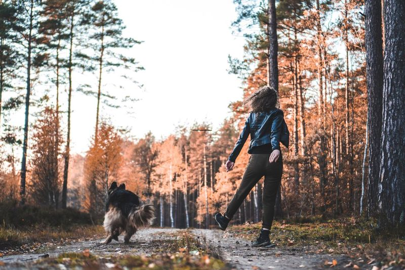 Doggo Playing Mammal Playful Dog Pet Photography  Throwing  Play Time Mammal One Animal Tree Animal Themes Domestic Animal Pets Domestic Animals Canine Dog Nature One Person Lifestyles Real People Vertebrate