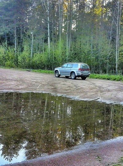 In The Forest with my Car - Water Reflection of Trees . Woods Nature Around Us Nature And Me