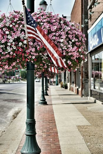 Smalltownusa Hanging Baskets Flags