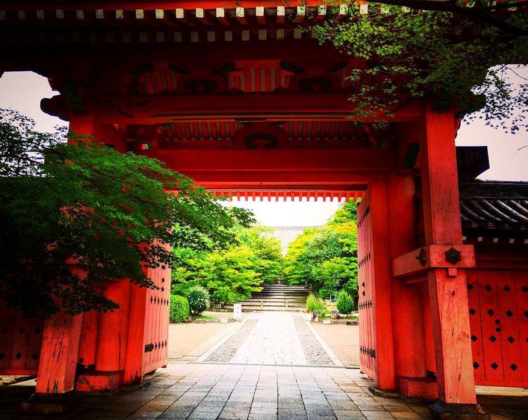 真如堂 真正極楽寺 京都 Kyoto Kyotojapan Relaxing