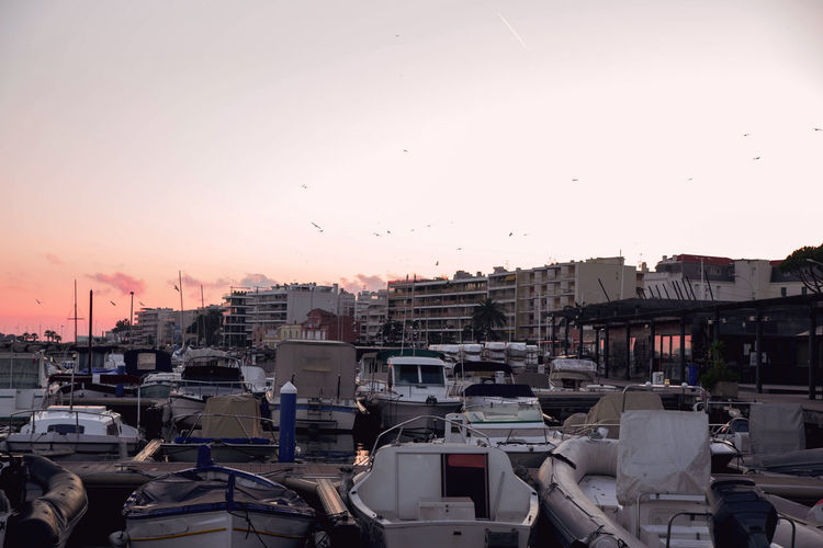picturesque sunset with yachts at the pier on the coast, Cannes Riviera Sky Sunset Transportation Building Exterior Architecture Mode Of Transportation City Built Structure Car Motor Vehicle Land Vehicle Nature No People Clear Sky Outdoors Residential District Street Orange Color Cityscape Traffic Cannes