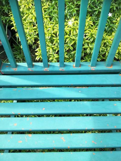 Iron Chair Land In A Row Sunlight Side By Side Staircase Potted Plant Full Frame Architecture Close-up High Angle View Pattern Outdoors Green Color Metal Nature Blue No People Growth