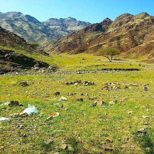 Landscape Beatifull Grass Far Muontain