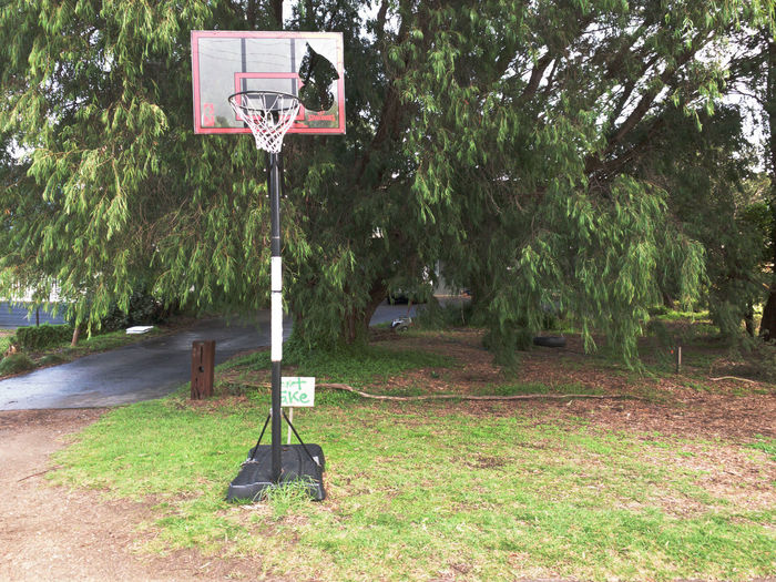 View of basketball hoop on field