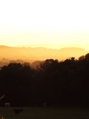 Check This Out Nature On Your Doorstep Nature Cumbria Landscape Penrith Sunrise