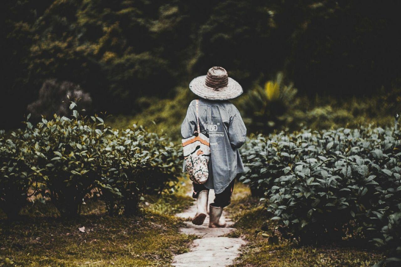 REAR VIEW OF WOMAN WALKING ON STREET AMIDST PLANTS