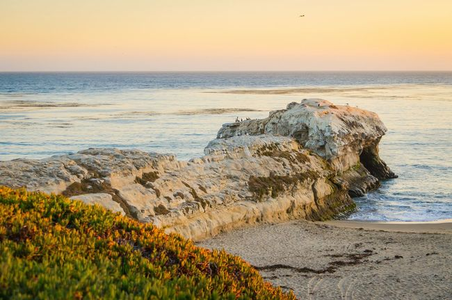 I'm still digging through photos from my Santa Cruz trip a few weeks ago. Here's a shot from Natural Bridges near sunset. A beautiful spot to stop at and enjoy the scenery. Beach Beach Life Ocean Nature Santa Cruz California Landscape California Coast