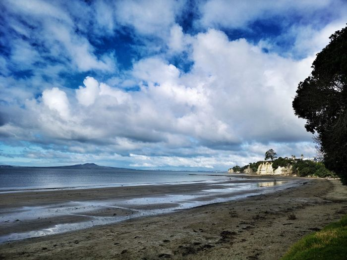 Winter day at the beach. NZ Newzealand Auckland Water Sea Beach Tree Sand Blue Low Tide Sky Horizon Over Water Landscape