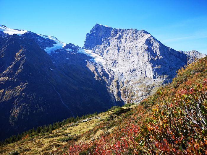 Autumn Colours Swissalps Switzerland Schweiz Swiss Mountains Alpen Engelberg Todi  EyeEm Selects Tree Mountain Snow Forest Mountain Peak Pinaceae Pine Tree Beauty Mountain Ridge Valley Rocky Mountains Glacier