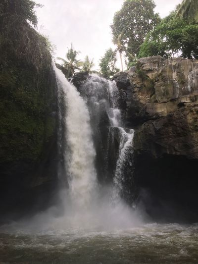 Bali Ubud Waterfall Nature Nature Nature_collection Water Scenics Breathtaking Picturesque Paradise Getaway  Hiking Outdoors Fun