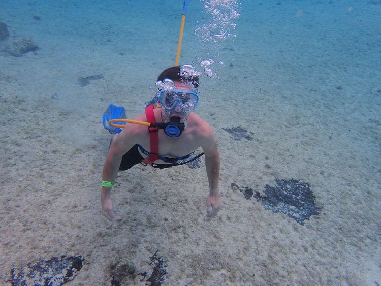 Snuba Underwater Exploration Swimming Sea Life Water Adventure Sea Leisure Activity UnderSea