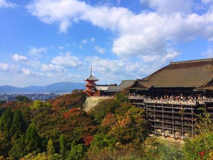 Historical Building Japan Kiyomizu-dera KiyomizuTemple Travel Photography History Kyoto Kyoto,japan Mountain Nature Sky Temple 京都 日本 観光 観光地
