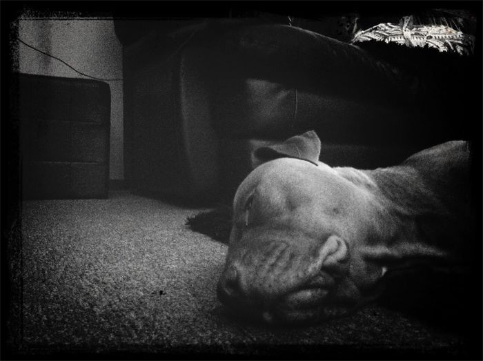 Wow just fall asleep on my floor it's fine -.-