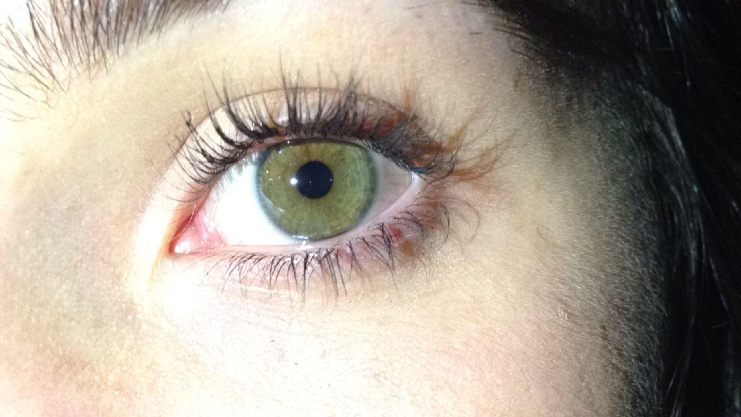 human eye, eyelash, close-up, eyesight, part of, sensory perception, extreme close-up, human skin, extreme close up, iris - eye, full frame, eyeball, unrecognizable person, human face, person, looking at camera, vision