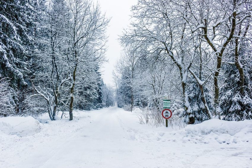 Can't go there. Snow Winter Cold Temperature Nature Transportation White Color Tranquil Scene Beauty In Nature Scenics Road No People Day Bare Tree Tree Outdoors Sky Shades Of Winter Shades Of Winter