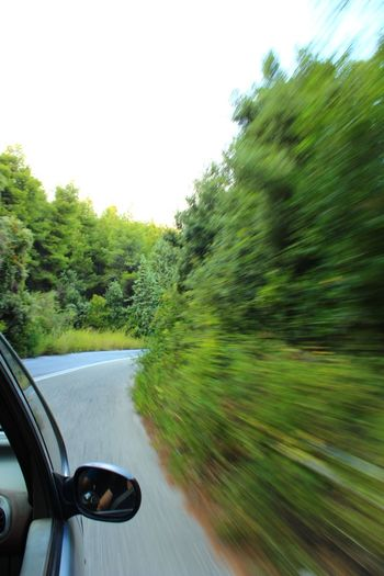 Road Trip 🚗🌲 #greece #Greek #GreekNatureBeauty #forest #Road #green #beautifulday #magicalplace Water Blurred Motion Adventure Mountain Road Woods Car Point Of View