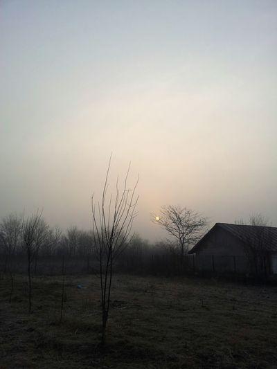 Foggy Morning BeautifulSunRise Blurry Sunrise Hello World Followthesun EyeEm Nature Lover Nature Photography Redsun Popular Photos Peaceandlove