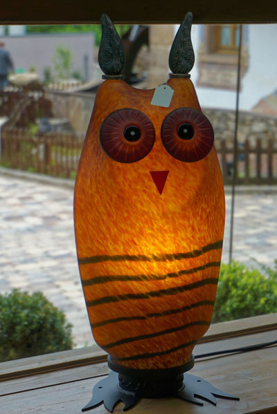 Close-up Focus On Foreground Orange Color Owl Owl Art Owllife Owls Live Love Shop The OO Mission