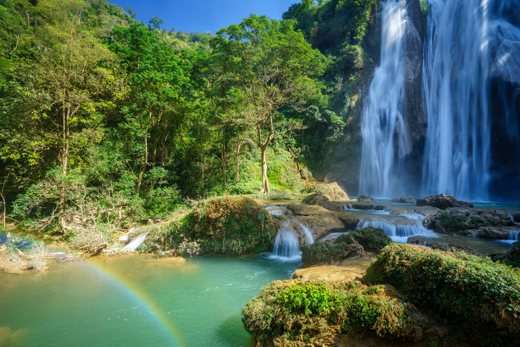The Elements and the Tree of Life (Anisakan Waterfall, Myanmar) Anisakan Beauty In Nature Flowing Water Forest Idyllic Lush Foliage Motion Myanmar Nature No People Outdoors Plant Power In Nature Pyin Oo Lwin Rain Rainbow Rock - Object Rock Formation Scenics Tranquil Scene Tranquility Tree Water Waterfall