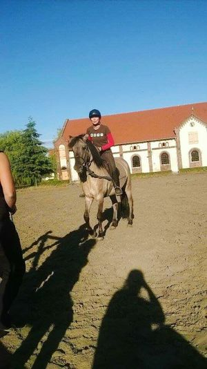 Relaxing Enjoying Life Hello World That's Me Have Fun Urban Sports Horses Animal Love Meeting Friends Sport