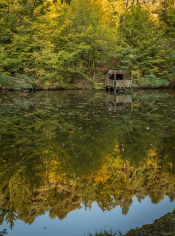 Autumn Autumn Colors Farbrausch Herbststimmung Spiegelung Im Wasser Herbstfarben Lake Leaves Outdoor Photography Reflections In The Water Lost In The Landscape