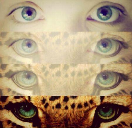 Eyes Occhi Belli Instaeye sfumature