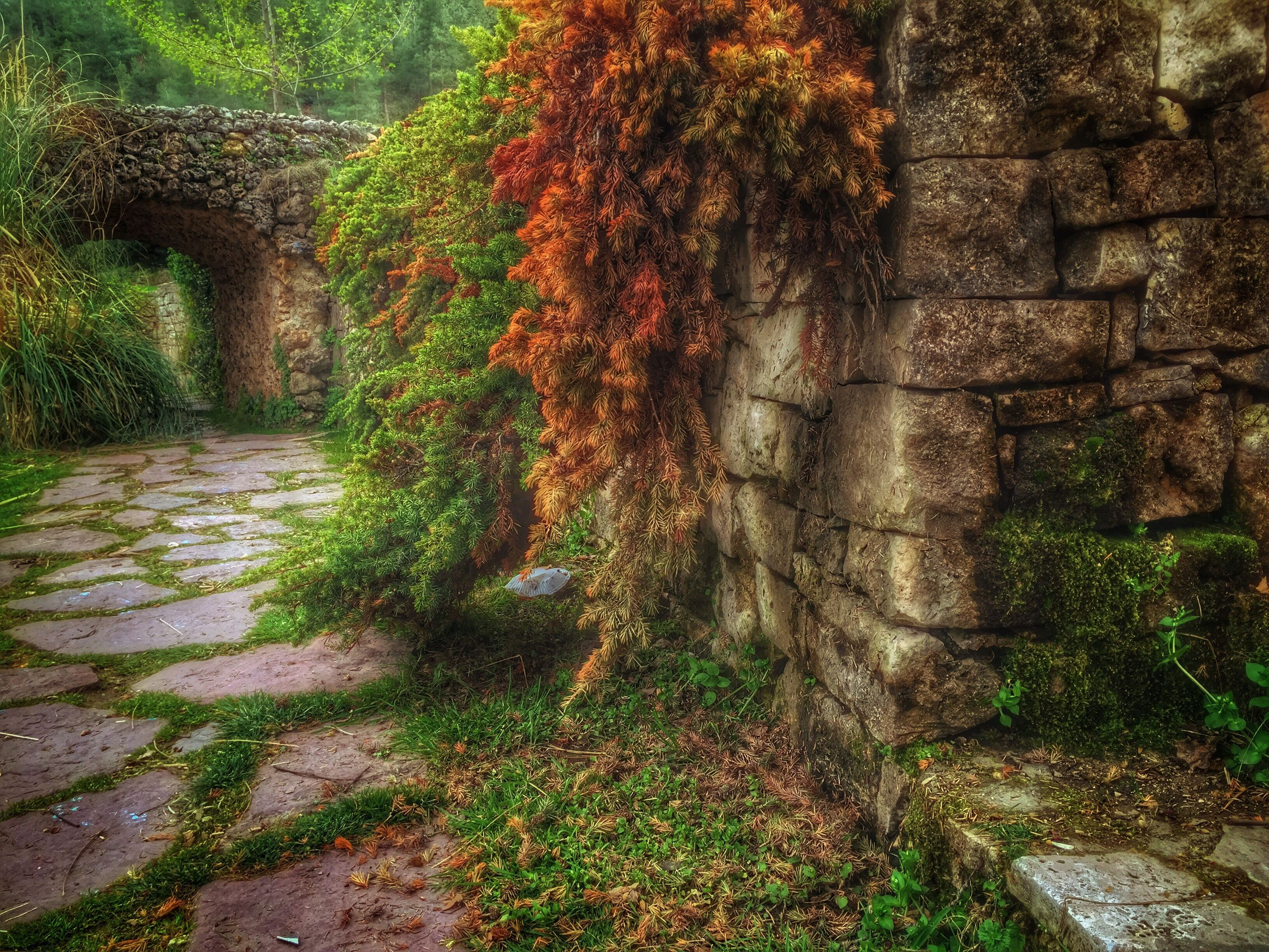 built structure, architecture, the way forward, plant, tree, growth, stone wall, wall - building feature, building exterior, footpath, steps, green color, day, walkway, outdoors, brick wall, nature, pathway, no people, sunlight