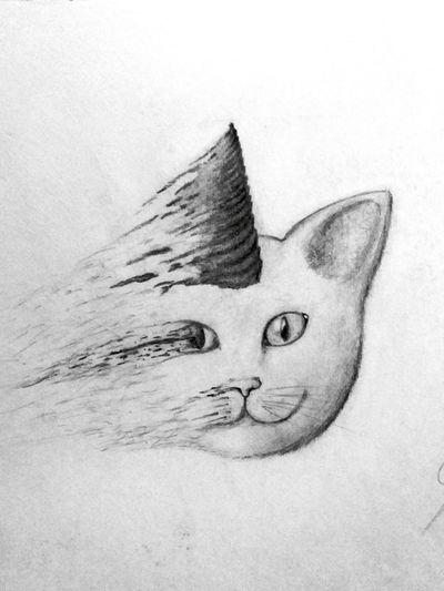 My Draw ♥ Draw By Me Drawingtime My Draw My Creativity Art, Drawing, Creativity My Drawing (: Hi! My Creation Drawings Draw My Drawing My Drawings Art Creative Creativity ArtWork Drawing Cat Cat♡ Cat Drawing Fading Fading Face Cat Face Cat Unicorn