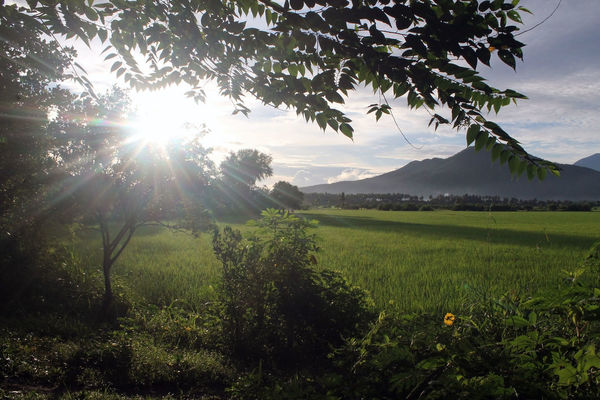 Beauty In Nature Landscape Mountain Nature Scenics Sun Sunlight