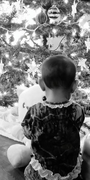 Innocence Christmas Tree Christmas Lights Neice