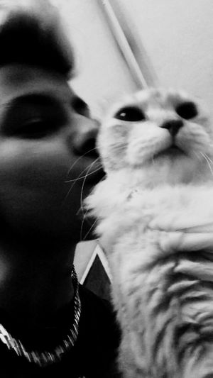 Hey humans! He's kissing me!! 😍❤️ Cat♡ Selfiewithcat Puppy❤ Sweet♡