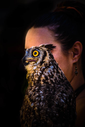 Close-Up Of Woman With Owl Against Black Background