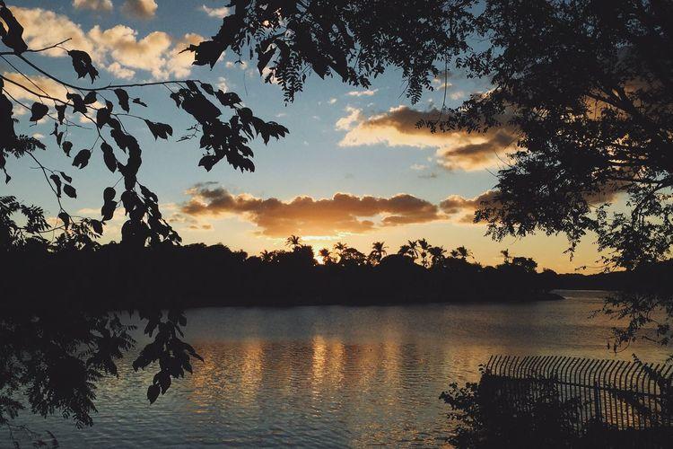 Lagoa Da Pampulha Belo Horizonte Minas Gerais Por Do Sol Sunset Sunset_collection Sunset Silhouettes Vscocam VSCO Paint The Town Yellow