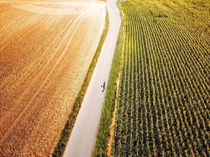 It's About The Journey Moments Of Happiness Drone  Dronephotography Shilhouette Exploring Woman Traveling Travel Walking Alone... Walk Motion Beauty In Nature Land Nature Plant Field High Angle View Landscape Sunlight Agriculture Rural Scene Environment Growth Farm Crop  Transportation Tranquility Road Scenics - Nature 2018 In One Photograph
