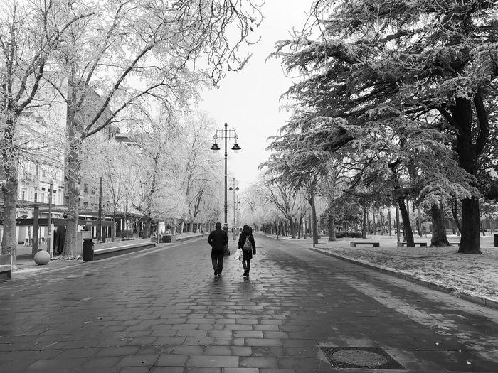 People walking on footpath by street in city