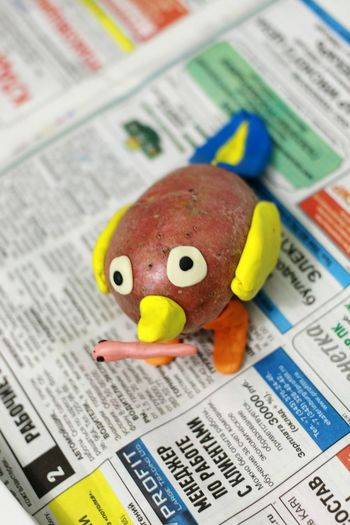 Child made Handmade Little Bird Enjoying Life Wildlife Wildnature Worm