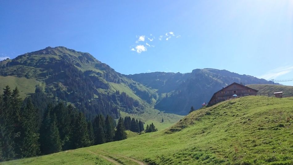 Loved the calmness Landscape Nature EyeEm Nature Lover Idyllic Mountain Bergwelten Tranquil Scene Beauty In Nature