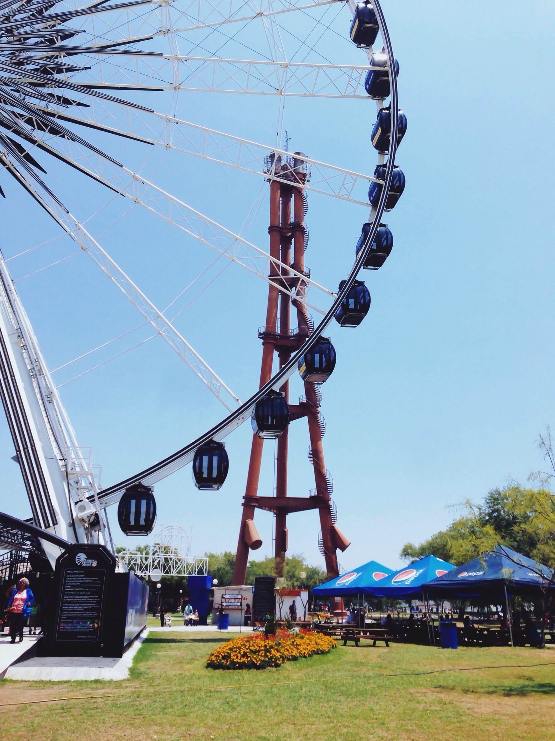 amusement park, amusement park ride, arts culture and entertainment, clear sky, ferris wheel, leisure activity, fun, low angle view, blue, enjoyment, tourism, tree, travel destinations, lifestyles, travel, sky, men, famous place, day