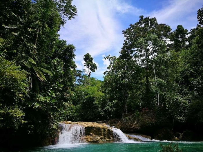 Waterfall Lush Green Mountains Nature_ Collection