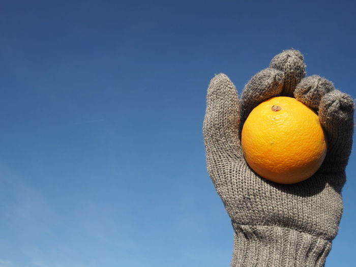 #HealthyLife Blue Sky Cold Every Day Food Healthy Eating Healthy Lifestyle Healthyfood Healthylife Orange Winter Winter Fruits
