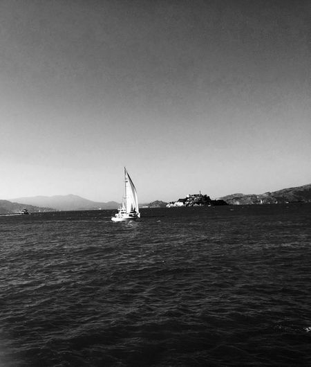 EyeEmNewHere Ocean Sky Landscape Freshness Water Sailboat Breathtaking View Mode Of Transport Sail Away With Me Black And White Photography San Francisco Bay My View From Here Love The Water Downtown San Francisco EyeEm Ready   An Eye For Travel Colour Your Horizn The Street Photographer - 2018 EyeEm Awards The Great Outdoors - 2018 EyeEm Awards The Traveler - 2018 EyeEm Awards