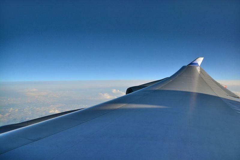<A Sunny Day> Sunny Day Air Plane Sky
