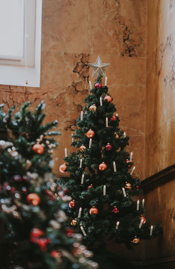 Decorated christmas trees at home